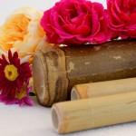 Bambusová masáž